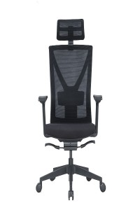 Adjustable Seat Back Mesh Chair
