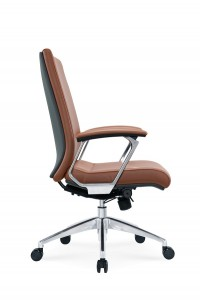 Fancy Leather Visitor Chair