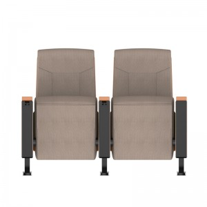 Factory Wholesale Commercial Theater Seating Hot Sale Auditorium Chair